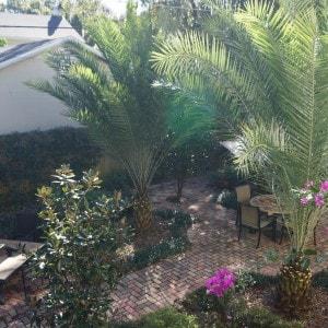 Orlando Landscape Design 1